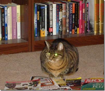 Nora reading