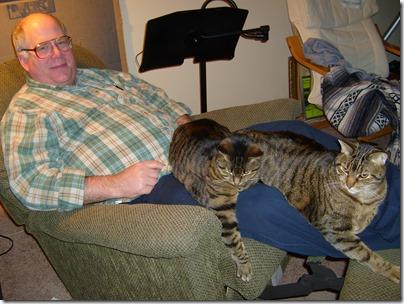 Cats 010