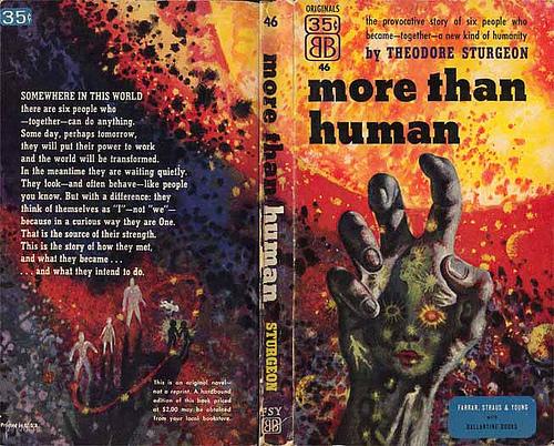 030-more-than-human