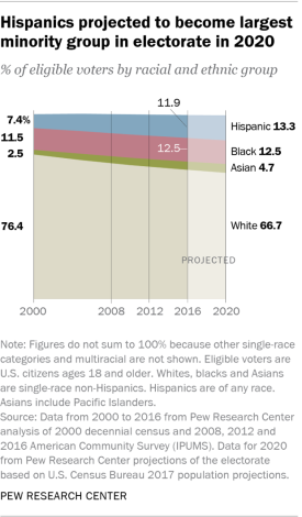 Voters by ethnic groups