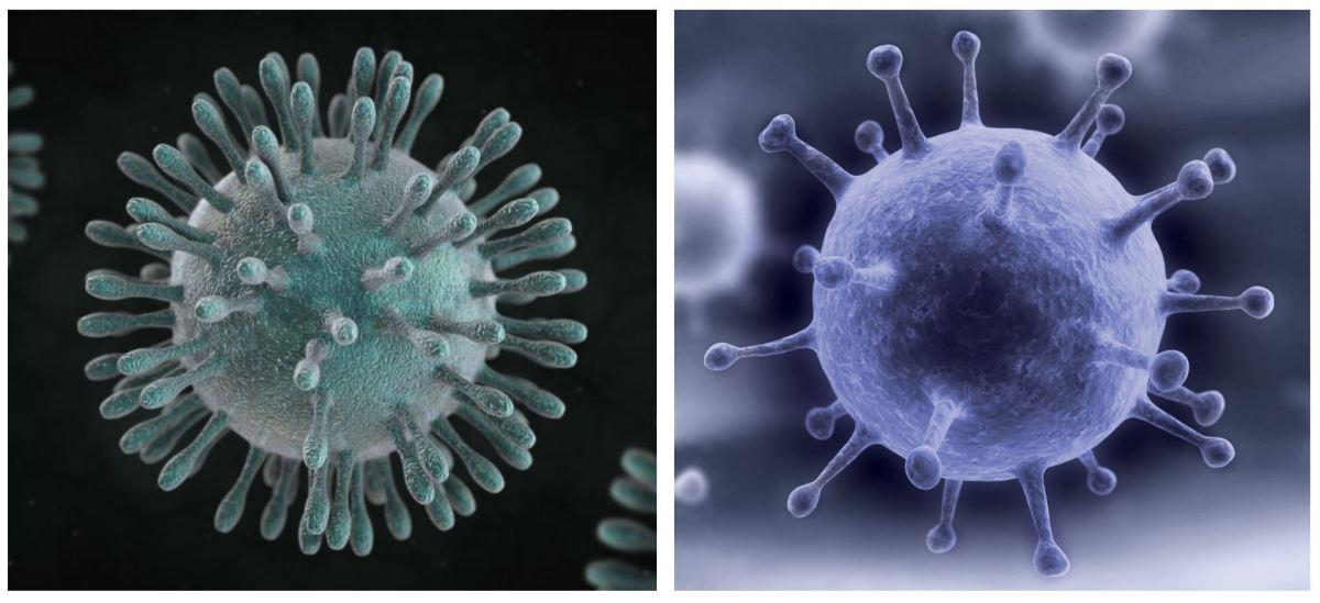 Coronavirus v. Flu